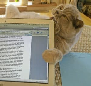 Poes bijt in open laptopscherm