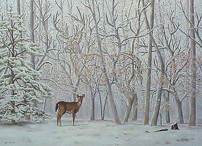 Hert in bos in de winter